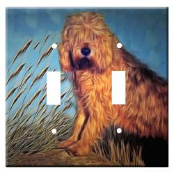 Otterhound 2a-dlsp