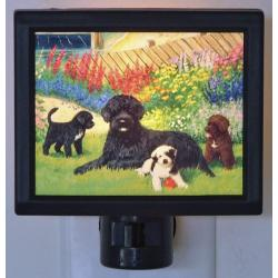 Portuguese Water Dog Picture Nightlight #4