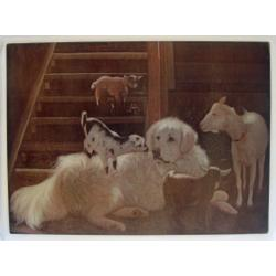great pyrenees cutting board 1
