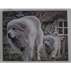 Great Pyrenees tile 5