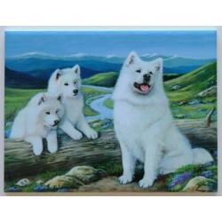 Samoyed #2 - 6X8 Ceramic Picture Tile