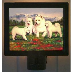 Samoyed Picture Nightlight #3
