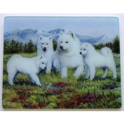 Samoyed 3 Tempered Glass Cutting Board