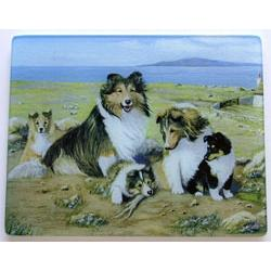 Sheltie 3 Tempered Glass Cutting Board