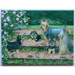 Silky Terrier Picture Tile - 6X8 #1