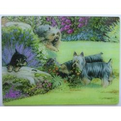 Silky Terrier Tempered Glass Cutting Board #2
