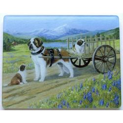 St. Bernard 3 Tempered Glass Cutting Board