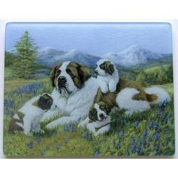 St. Bernard 4 Tempered Glass Cutting Board