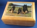 Belgian Terv Presentation Jewelry Box
