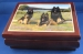 Belgian Terv Treasure  Music  Jewelry Box