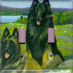 Belgian Tervuren 1C Double Light Switch Plate