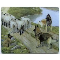 Belgian Tervuren 4 Tempered Glass Cutting Board
