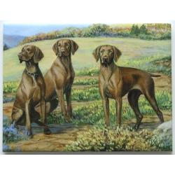 Vizsla #4 - 6X8 Ceramic Picture Tile