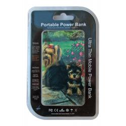 Yorkie 3-pbk package