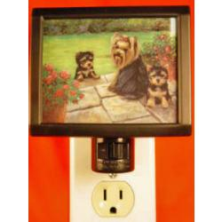 Yorkie Nightlight #3