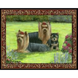 Yorkshire Terrier 4 Single Tapestry Placemat